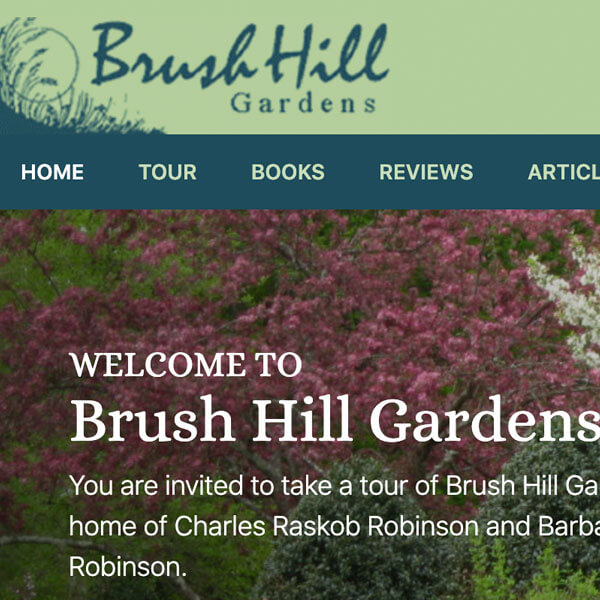 Brush Hill Studios Website
